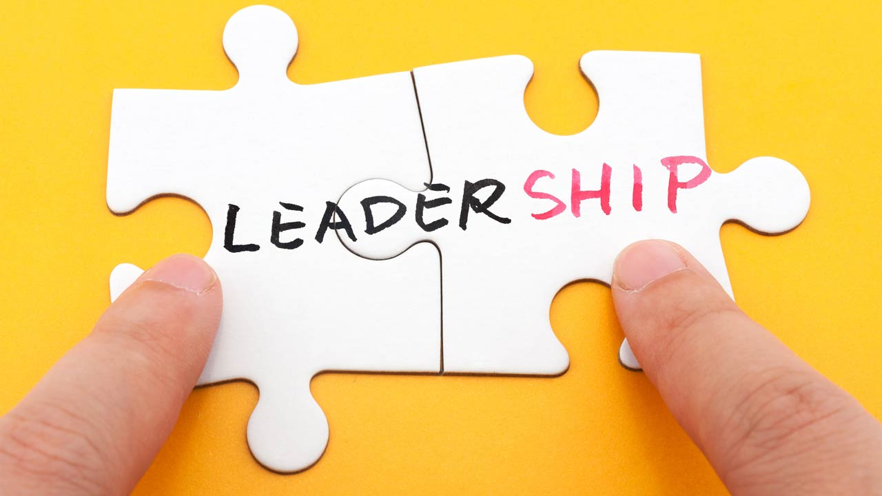 Promote Leadership Excellence